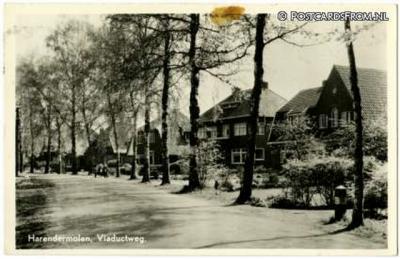 Harenermolen, Viaductweg (postaal Haren), 1959