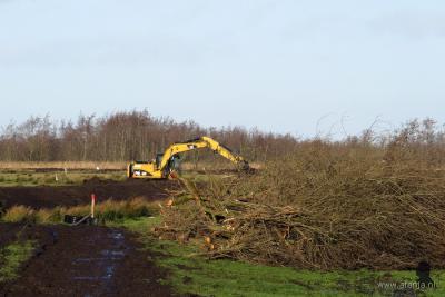 Met groot materieel is houtopslag verwijderd, nabij Headammen in de Alde Feanen, om het waterriet weer een betere 'biotoop' te geven.