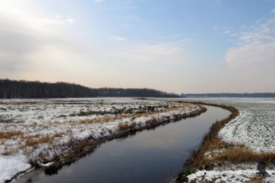 Jan. 2016. Het Alddjip (NL: Koningsdiep) O van Heidehuizen baant zich tussen licht besneeuwde oevers een weg in W richting. Foto gemaakt vanaf de nieuwe brug in de N381. Links zie je de bebossing van het Weinterper Skar, rechts de bossen van Olterterp.