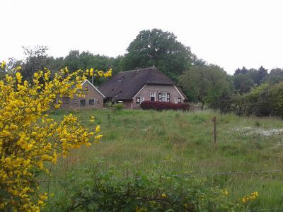 Boerderij aan de Schaarshoekweg, tegen de spoorlijn. Het gebied Schaarshoek valt formeel onder het dorpsgebied van Wijhe (en daarbinnen onder buurtschap Elshof), maar wordt in de praktijk tot Heino gerekend omdat het daar tegenaan ligt. (©Hans van Embden)