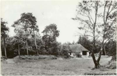 Herpen Vakantieverblijf Herperduin 1971
