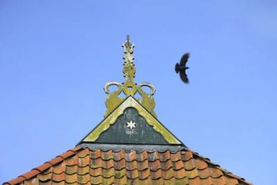 Hidaard, het uilenbord (Fries: ûleboerd) van dichtbij. Wat een uilenbord voor een ding is, kun je in de tekst lezen onder het kopje Beeld. (© Jan Dijkstra, Houten)