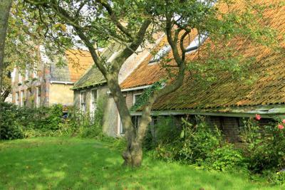 De dorpskern van Hidaard omvat naast de kerk slechts vier handenvol huizen. Wel veel mooie monumentale pandjes, deels verscholen in het groen. (© Jan Dijkstra, Houten)