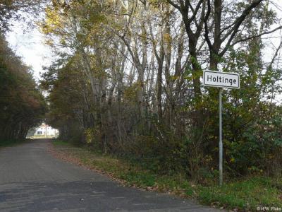 Holtinge is een buurtschap in de provincie Drenthe, gemeente Westerveld. T/m 1997 gemeente Havelte.