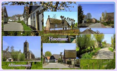 Hoornaar is een dorp in de provincie Zuid-Holland, in de streek Alblasserwaard, gem. Molenlanden. Het was een zelfstandige gem. t/m 1985. In 1986 over naar gem. Giessenlanden, in 2019 over naar gem. Molenlanden. (© Jan Dijkstra, Houten)