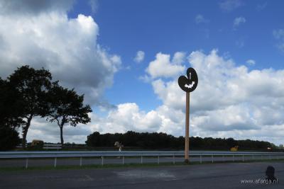 In het uiterste NO puntje van het grondgebied van Hoornsterzwaag is in 2015 een heel bijzonder object geplaatst, nl. een 'hop-over' voor vleermuizen. Wat dat inhoudt, kun je lezen onder het kopje Landschap, natuur en recreatie. (© www.afanja.nl)