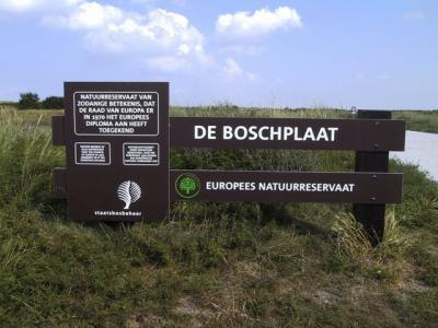Aan het begin van de geweldige Boschplaat, de parel van het dorp Oosterend en van heel Terschelling, een omvangrijk natuurgebied, Europees Natuurreservaat en in 2015 benoemd tot eerste Dark Sky Park van Nederland. (© Jan Dijkstra, Houten)