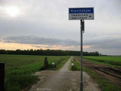 Kievitshaar is een buurtschap in de provincie Overijssel, gem. Hardenberg. De buurtschap valt onder het dorp Oud Avereest. De buurtschap heeft geen plaatsnaamborden, zodat je slechts aan de gelijknamige straatnaamborden kunt zien dat je er bent aangekomen