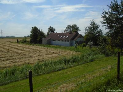 Deze dus. Toen deze Biesboschkapel op Kievitswaard 47 te klein werd voor de toegenomen Hervormde bevolking van Werkendam, is in 2004 een nieuwe Biesboschkerk gebouwd in de dorpskern van dat dorp.