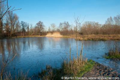 Klarenbeek, Beekbergerwoud