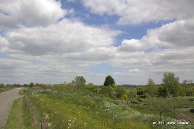 De Kortenhoevendijk in buurtschap Kortenhoeven, gezien in de richting Vianen
