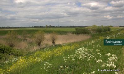In de uiterwaarden, ter hoogte van Kortenhoeven, zien we de Bolswaard; alles over dit gebied van Het Zuid-Hollands Landschap onder het kopje Landschap, natuur en recreatie.