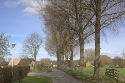Sinds de herindeling van 2001 zijn de dorpen Vleuten en De Meern flink uitgebreid. Het dorp Haarzuilens is gelukkig landelijk gebleven. Dat geldt ook voor buurtschap Lage Haar. (© Jan Dijkstra, Houten)