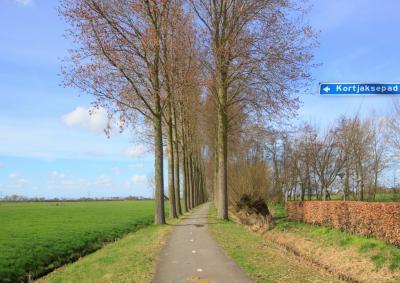 Aan het eind van buurtschap Lage Haar kom je op het fietspad Kortjaksepad. Tot in de jaren zestig lagen hier nog de afwateringskanalen Heicop en Bijleveld. Deze slootjes zijn daar nu nog van over. (© Jan Dijkstra, Houten)