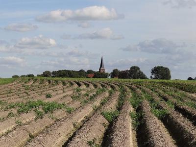 Zoals veel dorpen op het Groninger Ommeland is ook Leens al van verre herkenbaar aan zijn 'landmark': de kerktoren. (© Harry Perton / https://groninganus.wordpress.com/2019/09/14/van-baflo-naar-leens-op-open-monumentendag)