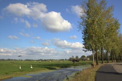 De Leerbroekseweg, vanuit Leerbroek richting Nieuwland en Meerkerk, is een zeer mooie weg om te wandelen of te fietsen. Heel landelijk en met veel imposante oude boerderijen. (© Jan Dijkstra, Houten)