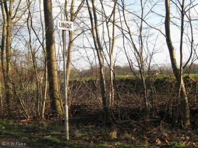 Linde is een buurtschap in de provincie Gelderland, in de streek Achterhoek, gemeente Bronckhorst. T/m 2004 gemeente Vorden. De buurtschap valt onder het dorp Vorden. De buurtschap ligt buiten de bebouwde kom en heeft daarom witte plaatsnaamborden.