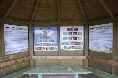 Een van de vele voorzieningen die recentelijk in Mallem zijn gerealiseerd, is deze gecombineerde schuilhut/vogelkijkhut/informatiepunt. Je kunt er dus én even bijkomen én de vogels begluren én lezen wat er nu zo bijzonder is aan deze omgeving. Handig!