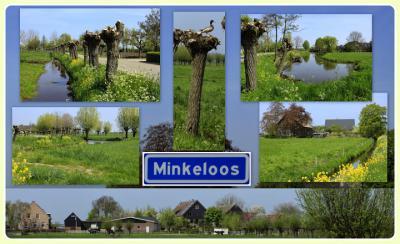 Minkeloos is een buurtschap in de provincie Zuid-Holland, in de streek Alblasserwaard, gem. Molenlanden. T/m 1985 deels gem. Hoogblokland, deels gem. Noordeloos. In 1986 over naar gem. Giessenlanden, in 2019 over naar gem. Molenlanden. (© Jan Dijkstra)
