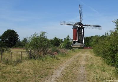 Dankzij hét monument van buurtschap Molenhoek, de Maasmolen uit 1741, kun je al van verre herkennen dat je deze buurtschap nadert. De molen was in nov. 2016 stilgezet wegens mankementen, maar dankzij restauratie in 2017 draait hij weer als een zonnetje.
