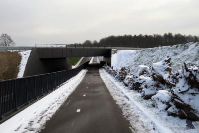 Dit is de in 2015 gereedgekomen Peeltunnel onder de N381, W van de buurtschap Moskou. Bijzonder element is de 'stobbenwal' langs het fietspad, waardoor kleine (zoog)dieren en reptielen veilig onder de nieuwe N381 door kunnen lopen dan wel kruipen.