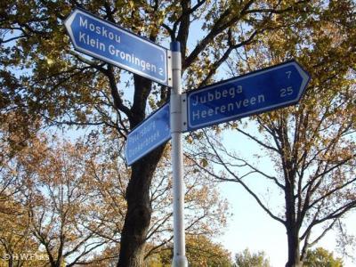 In de omgeving van Moskou staan keurige richtingborden die je vertellen welke kant je op moet om er te komen. Maar ter plekke staan alleen geen plaatsnaambordjes om te vertellen dat en wanneer je er bent aangekomen. Da's dan weer minder...