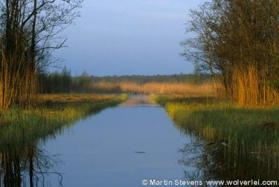 Het Naardermeer, Naarden/Muiderberg