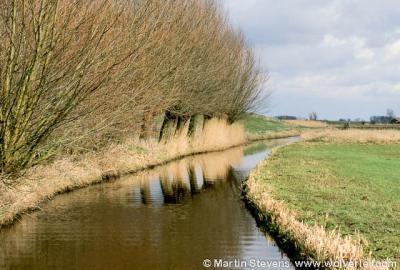 Nijkerk, Polder Arkemheen is een Natura 2000-gebied
