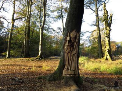 In oktober 2015 zijn in het kader van de jaarlijkse Landgoeddag door vijf 'woodcarvers' met kettingzagen tien 'sculpturen' in bomen gezaagd in het bos achter Hotel-Restaurant Het Witte Huis te Olterterp. Op de foto de sculptuur van Bonifatius.