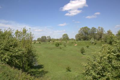 De Ossenwaard bij Vianen, waar de natuur zijn gang mag gaan. De Ossenwaard is, behalve de weg naar de Stuw bij Hagestein, niet toegankelijk zonder toestemming.
