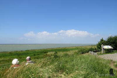 Vanaf de zes meter hoge steilrand van het Oudemirdumerklif bij Oudemirdum heb je een weids uitzicht over het IJsselmeer, dat in dit deel soms helemaal leeg is.