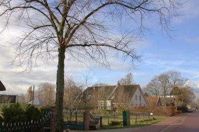 Tussen alle omringende nieuwbouw van Bedrijventerrein Oudenrijn en Leidsche Rijn is buurtschap Oudenrijn nog altijd een landelijk gelegen lintbebouwing. (© Jan Dijkstra, Houten)