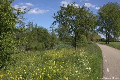 Bloemrijke berm langs het rivierje de Huibert in buurtschap Overheicop