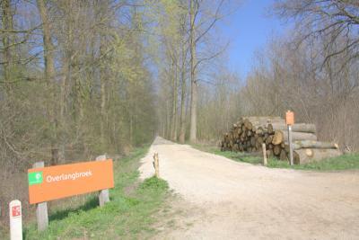 De landgoederen en natuurgebieden Kolland en Overlangbroek zijn in 2015 definitief aangewezen als Natura 2000-gebied, wat wil zeggen dat deze gebieden op Europees niveau bescherming genieten. (© Jan Dijkstra, Houten)