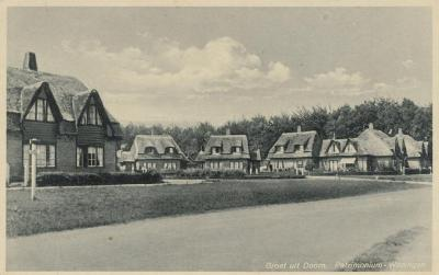Buurtschap Palmstad in de begintijd (jaren twintig): 20 woningen met rieten daken, gebouwd door woningbouwvereniging Patrimonium. Deze zijn allemaal verdwenen: deels afgebrand, deels afgebroken.