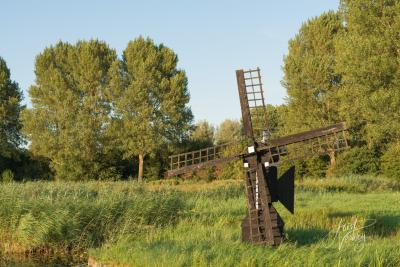 De Weidemolen in Park Het Noordhoekse Wiel is in 1980 gebouwd door de firma Rem uit Wormer, ter herinnering aan de twee watermolens die vroeger in Papendrecht hebben gestaan. (© Joost Verweij / https://alblasserwaardfotograaf.nl/informatie)