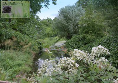De Pullenhof, een bijzonder mooie tuin aan het Molenpad in Schalkwijk; op open tuindagen is de tuin te bezoeken, echt een aanrader!