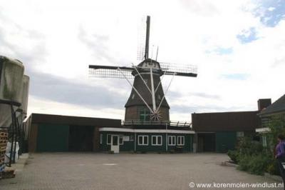 Dé blikvanger in Radewijk is de nog altijd in bedrijf zijnde korenmolen Windlust. De huidige molen dateert uit 1877. De voorganger uit 1861 is in dat jaar afgebrand. In het molenwinkeltje kun je o.a. bakmixen kopen.