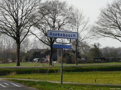 Roekebosch is een buurtschap in de provincie Overijssel, in de streek Kop van Overijssel, gemeente Steenwijkerland. T/m 1972 gemeente Wanneperveen. In 1973 over naar gemeente Brederwiede, in 2001 over naar gemeente Steenwijkerland.