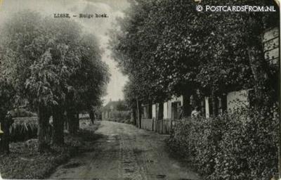 De buurtschap Ruigenhoek ligt niet in Lisse maar bij Lisse, NW ervan. Geografisch valt de buurtschap grotendeels onder het dorp De Zilk, en voor een klein deel onder het dorpsgebied van Noordwijkerhout. Ansichtkaart uit naar schatting ca. 1910.