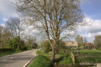 's-Gravensloot, een van de pareltjes in het buitengebied van de gemeente Woerden en het dorp Kamerik