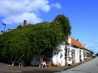 Huisje onder de bruidssluier in 's-Heerenhoek