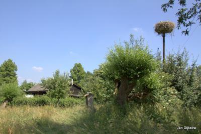 Achter Natuurcentrum De Schaapskooi van Natuur- en Vogelwacht De Vijfheerenlanden in buurtschap Overboeicop