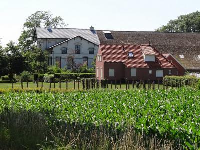 Scheemda, het ene uiterste en het andere: een knoeperd van een boerderij naast een klein woonhuisje. Nou ja, dat huis is niet eens zo klein, de boerderij is gewoon erg groot, waardoor op de foto het huis kleiner lijkt. (©https://groninganus.wordpress.com)