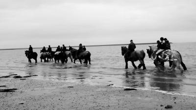 De jaarlijkse traditie van het straôrijden op Schouwen wordt vier weken voor Pasen afgesloten op de Schelphoek. Wat dit inhoudt, kun je lezen onder de link in het hoofdstuk Jaarlijkse evenementen. (© Hans van Embden)