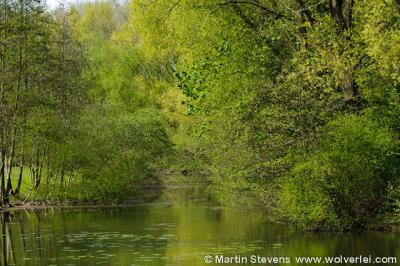 Sittard, natuurgebied Swienswei