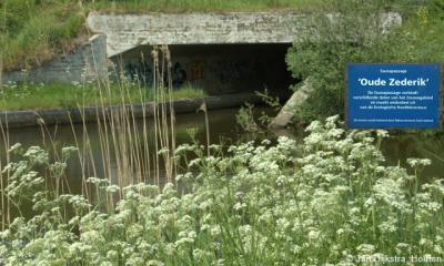 Tegenwoordig doorsnijdt de A27 de Oude Zederik. Gelukkig is er een 'duiker' aangelegd onder de A27 die de beide delen met elkaar verbindt. En: niet alleen waterdieren kunnen zich zo verplaatsen maar ook landdieren, over de oeverstrook in de duiker.