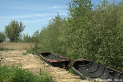 Natuurgebied Zouweboezem ZO van buurtschap Sluis bij Ameide. De pramen van de rietsnijders, die zo te zien zojuist hun werk hebben gedaan en even aan het pauzeren zijn.