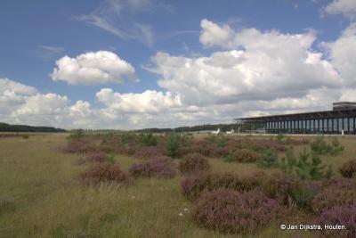 De natuur heeft nu vrij spel op de voormalige Vliegbasis Soesterberg. In de verte zien we het nieuwe Nationaal Militair Museum.