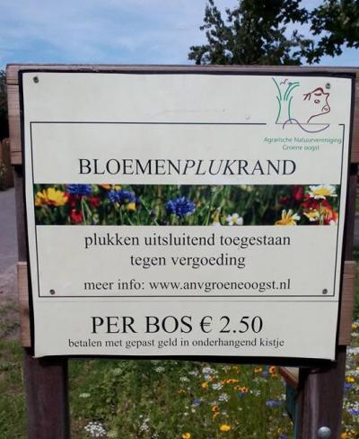 Jeroen Dees heeft een BloemenPlukRand aan de Pootersdijk in Spui. Je kunt hier voor € 2,50 zelf een bos bloemen plukken.